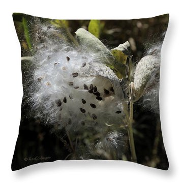 Milkweed Seeds Emerging Throw Pillow