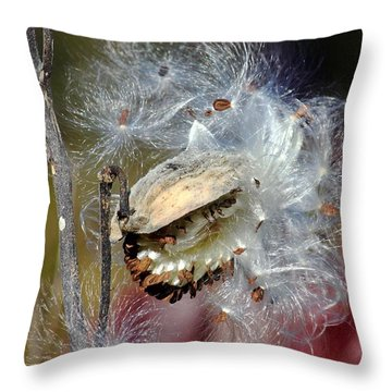 Milkweed Silk Throw Pillow