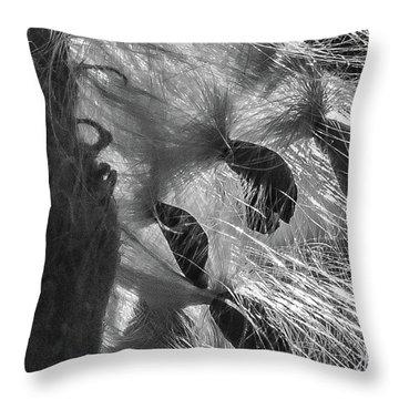 Milkweed Sunburst In Black And White Throw Pillow