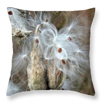 Milkweeds Seeds  Throw Pillow by Christy Ricafrente