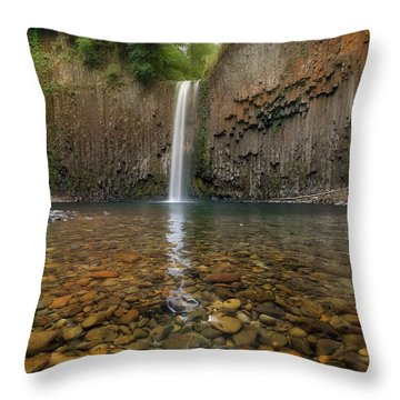 Milky Reflection Throw Pillow by David Gn