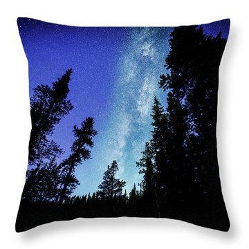 Milky Way Among The Trees Throw Pillow