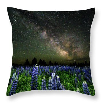 Milky Way And Lupine Throw Pillow by Cody Gould