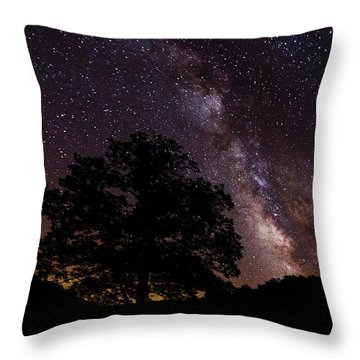 Milky Way And The Tree Throw Pillow