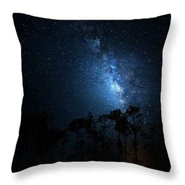 Throw Pillow featuring the photograph Milky Way At Big Cypress National Preserve by Mark Andrew Thomas
