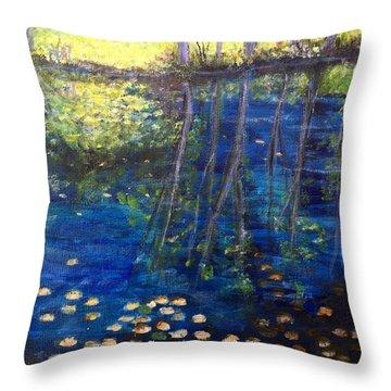 Mill Brook Kingston N H Throw Pillow