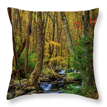 Mill Creek In Fall #1 Throw Pillow