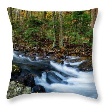 Mill Creek In Fall #2 Throw Pillow