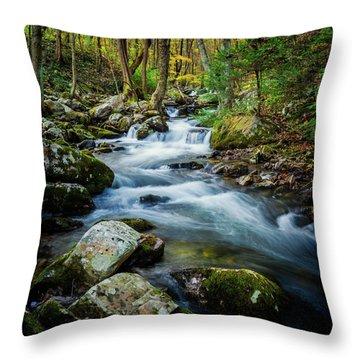 Mill Creek In Fall #3 Throw Pillow