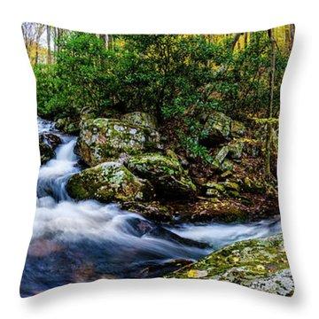 Mill Creek In Fall #4 Throw Pillow