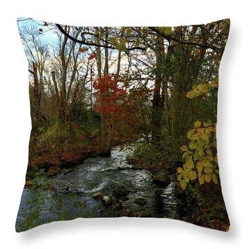 Mill Creek, Sandwich Massachusetts Throw Pillow