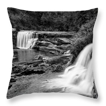 Mill Shoals Falls Throw Pillows