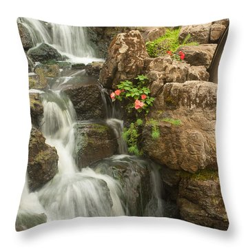 Mill Wheel With Waterfall Throw Pillow