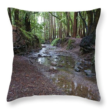 Throw Pillow featuring the photograph Miller Grove by Ben Upham III