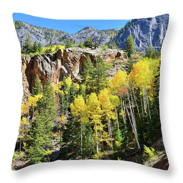 Throw Pillow featuring the photograph Million Dollar Highway 550 by Ray Mathis