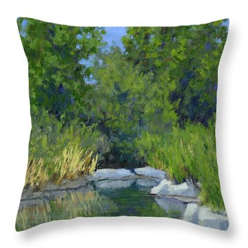 Millrace Pond Throw Pillow