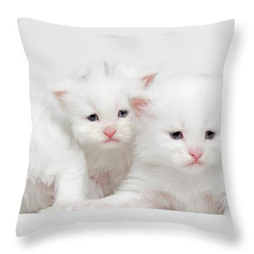 Milky Collection Throw Pillow