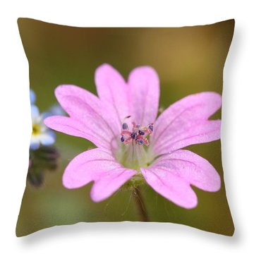 Throw Pillow featuring the photograph Minature World by Richard Patmore