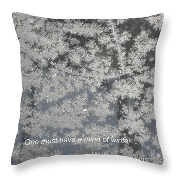 Mind Of Winter Throw Pillow