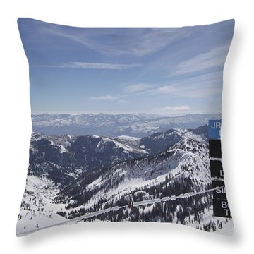 Mineral Basin Throw Pillow by Adam Jewell