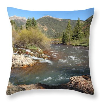 Mineral Creek Throw Pillow