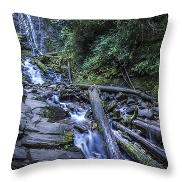 Mingo Falls One Throw Pillow