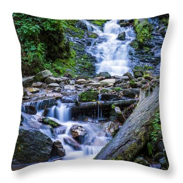 Mingo Falls Two Throw Pillow