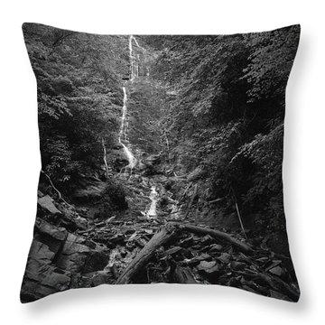 Mingo Falls Throw Pillow