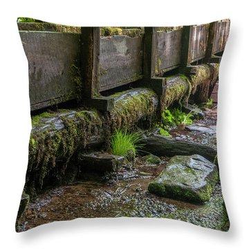 Mingus Mill Millrace Throw Pillow