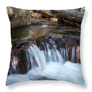 Mini-fall At Eagle Falls Throw Pillow