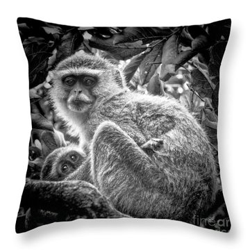 Mini Me Monkey Throw Pillow by Karen Lewis