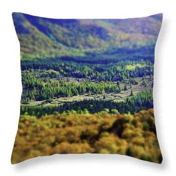 Mini Meadow Throw Pillow