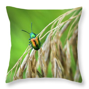 Throw Pillow featuring the photograph Mini Metallic Magnificence  by Bill Pevlor