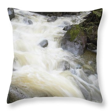 Mini Plunge Throw Pillow