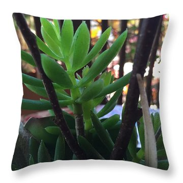Mini Succulent  Throw Pillow by Russell Keating