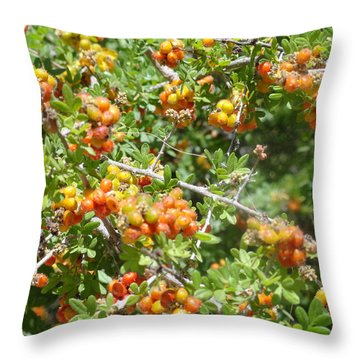 Miniature Fruit Balls Throw Pillow
