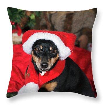 Miniature Pinscher Wishing A Merry Christmas Throw Pillow