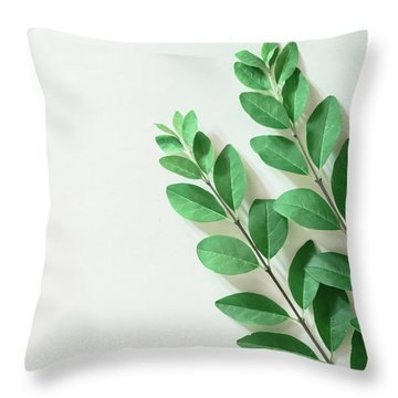 Throw Pillow featuring the photograph Minimal Green by Andrea Anderegg