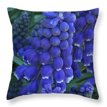Miniture Grape Hyacinths Throw Pillow
