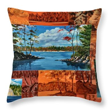 Mink Lake Looking North West Throw Pillow