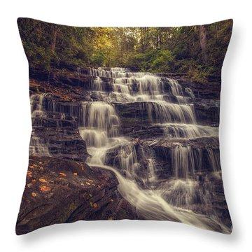 Minnehaha Fall 3 Throw Pillow