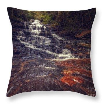 Minnehaha Fall Throw Pillow