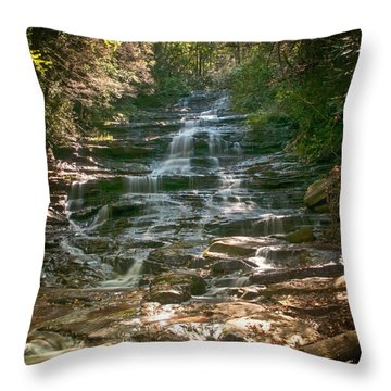 Minnehaha Falls Throw Pillow