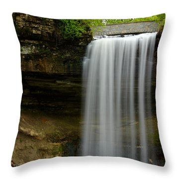 Minnehaha Falls Throw Pillow by Tiffany Erdman