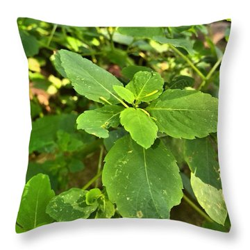 Throw Pillow featuring the photograph Minnesota Plant Life by Lisa Piper