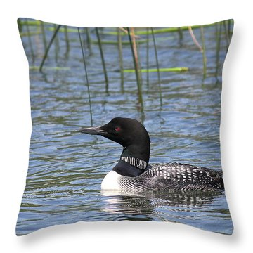 Throw Pillow featuring the photograph Minnesota State Bird by Penny Meyers