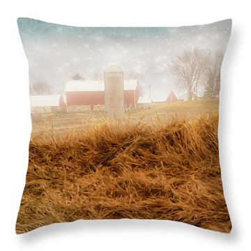 M_sota_ornot Throw Pillow