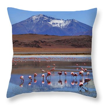 Throw Pillow featuring the photograph Mirage by Skip Hunt