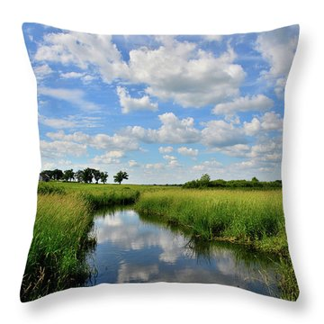 Mirror Image Of Clouds In Glacial Park Wetland Throw Pillow
