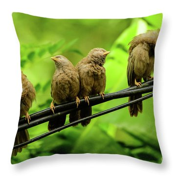 Mirror Image Throw Pillow